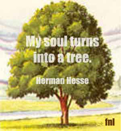My soul turns into a tree